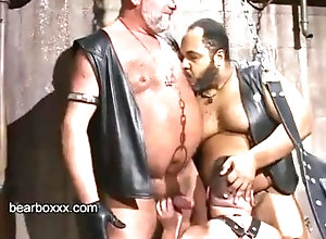 bearboxxx;bear;sling;daddy;hairy,Daddy;Gay;Bear Bear Party Volume 2