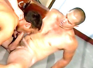 Gay,Gay Muscled,Gay Threesome,Gay Blowjob,gay,threesome,muscled,blowjob,large dick,men,doggy style,gay fuck gay,gay porn Bodybuilder Banging