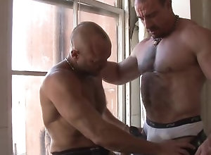 Gay,Gay Muscled,Gay Bear,Gay Daddy,Gay Underwear,Gay Pornstar,gay,muscled,bear,daddies,men,underwear,blowjob,gay fuck gay,gay porn,pornstars Ed Hunter and...